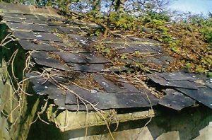 Burial Vault, roof 2014